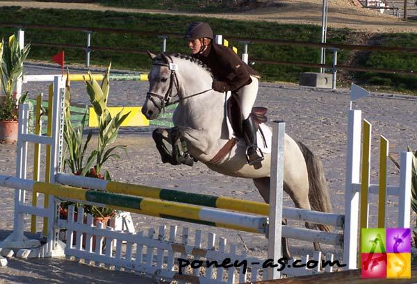 poney 4 ever