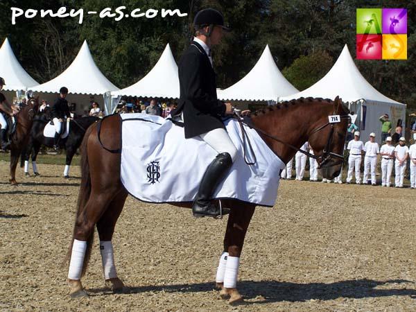 Le champion des 4 ans, Quilebo d'Angrie, sous la selle de Yannick Moreau, photo Pauline Bernuchon