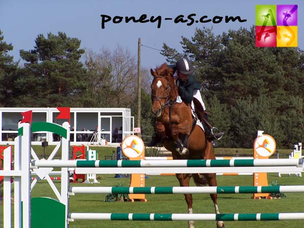 Tom Foley, en selle sur Dibidoe, remporte le GP du CSIOP, photo Pauline Bernuchon