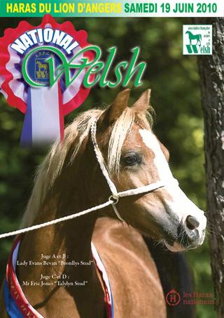 National Welsh 2010