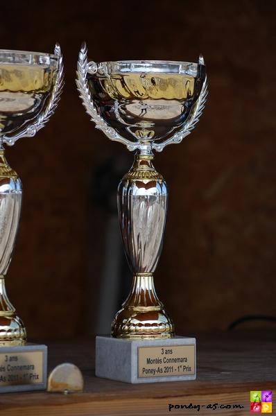 Championnat de France des 3 ans montés Connemara Poney-As 2011 - ph. Camille Kirmann