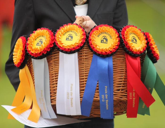 Preis der Besten 2013 - ph. Pferd-aktuelle.de