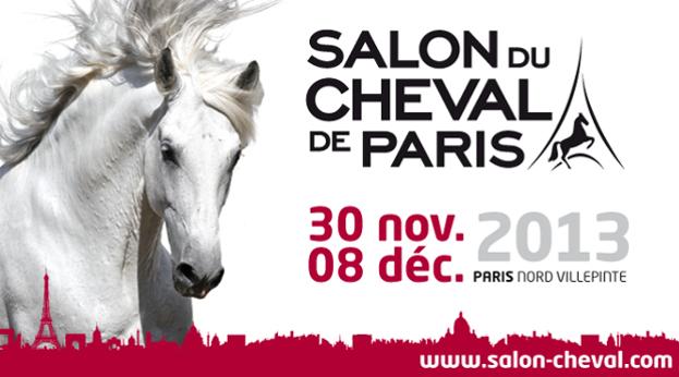 Tourn es des as de cso et dressage de villepinte salon du for Salon du cheval paris 2018