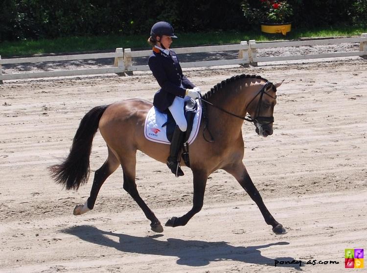 Power and Paint sous la selle d'Angela Krooswijk aux championnats d'Europe 2007 -  ph. Camille Kirmann