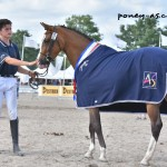 Diablotine, 3 ans FPPCF - ph. Poney As
