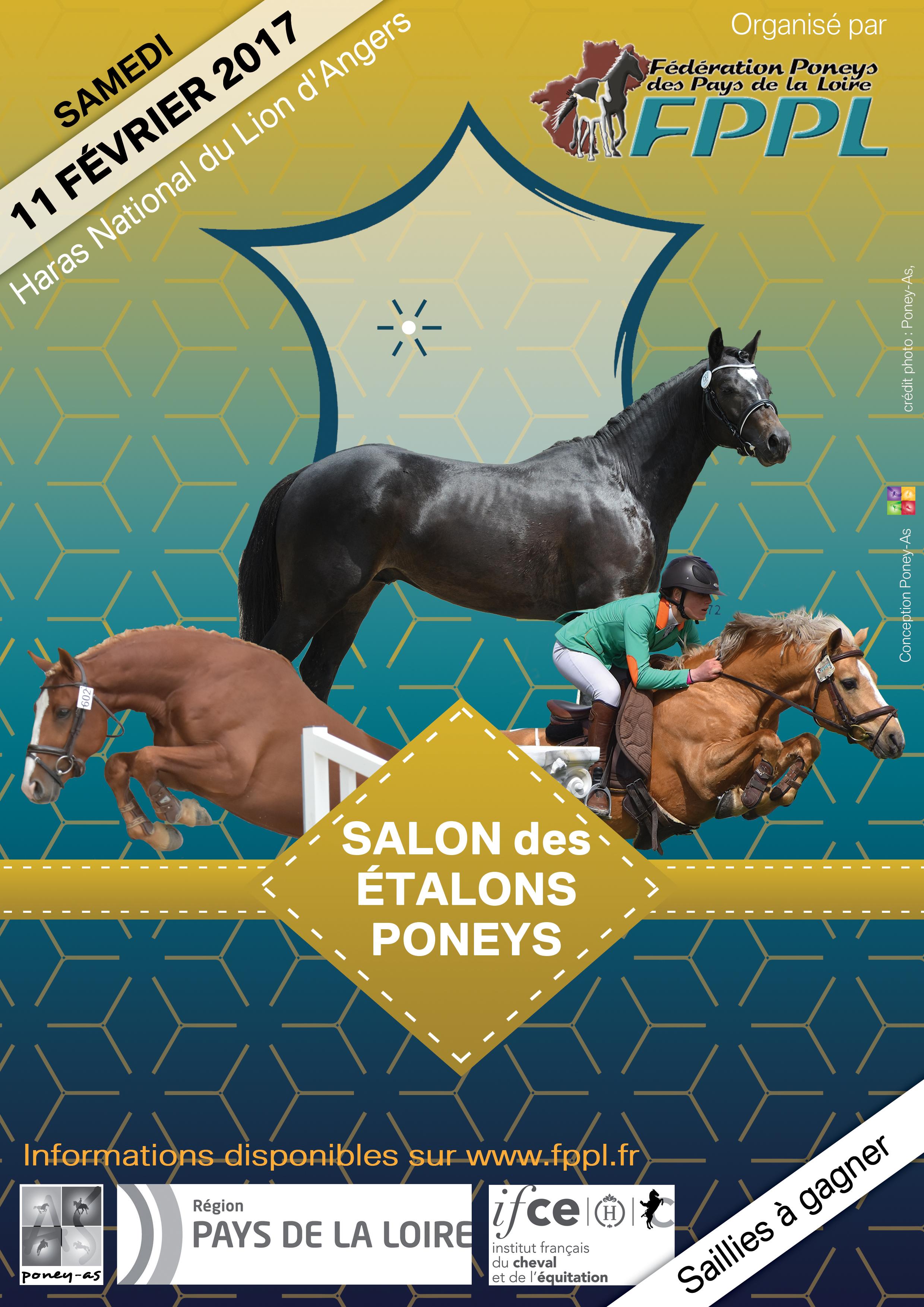 Salon des talons poneys du lion d angers dition 2017 for Salon du cheval angers 2017
