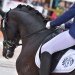 Charlotte Palas et Under Cover Fast, Generali Open de France - ph. Poney As