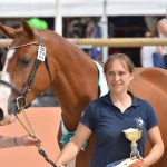 Sologn'Pony 2017 - National Pfs - Poney As