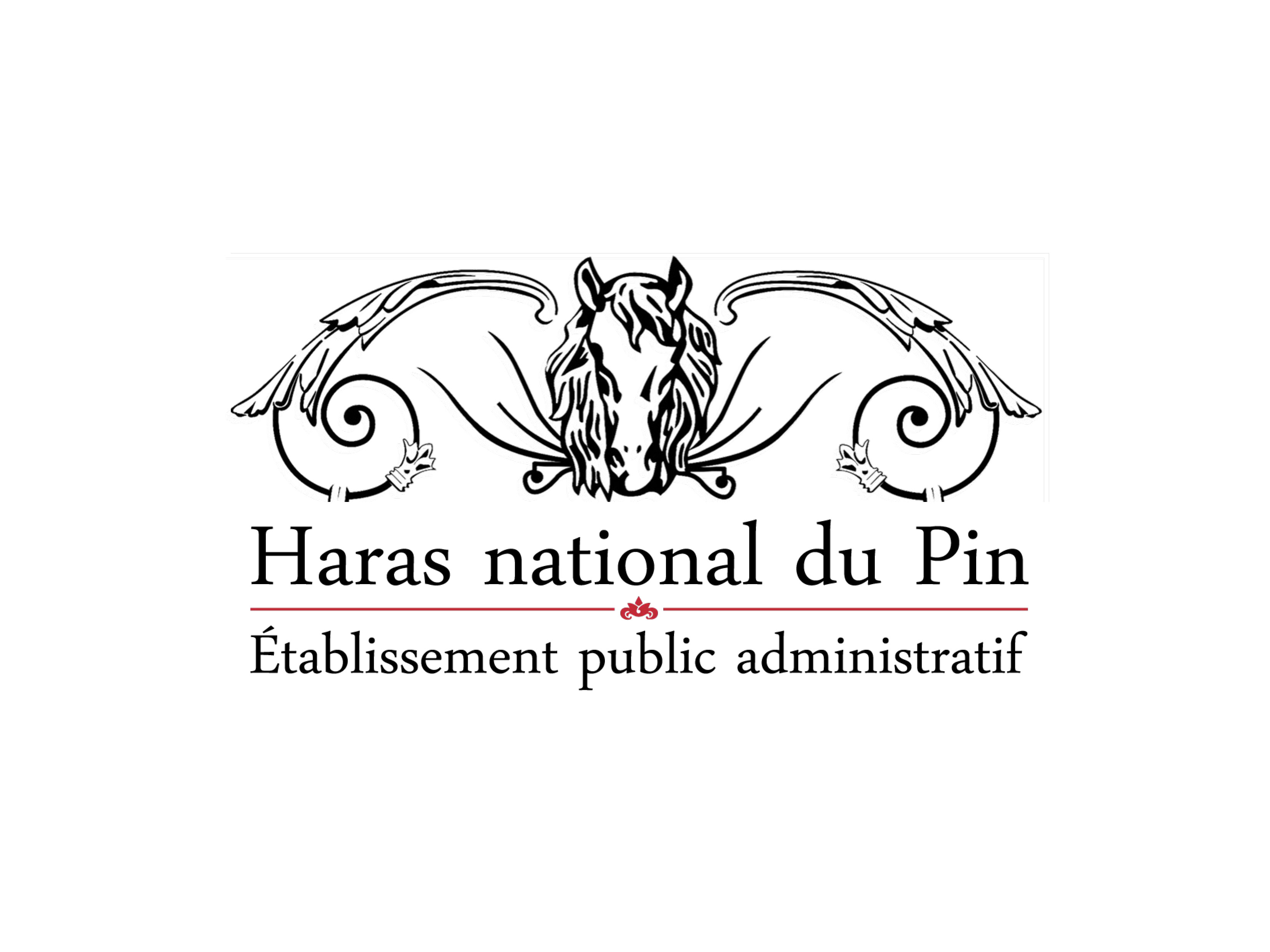 Le Haras National du Pin - Poney As