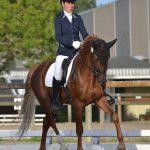 Le champion des 6 ans, Beltmeyer Linaro est gratifié d'un IPO 163, lui aussi sous la selle de Julia Leborgne - ph. Pauline Bernuchon