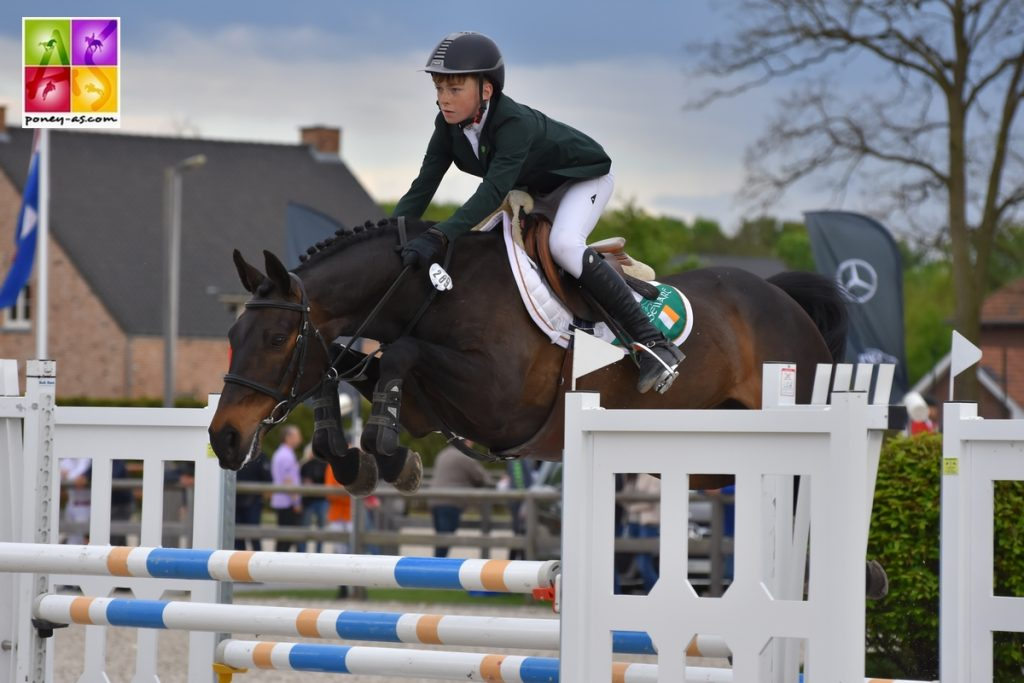 Sentower park seamus hughes kennedy poney as