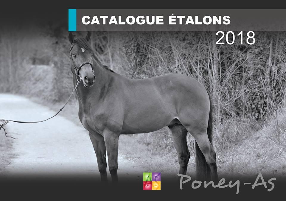 Le Catalogue des étalons Poney As 2018