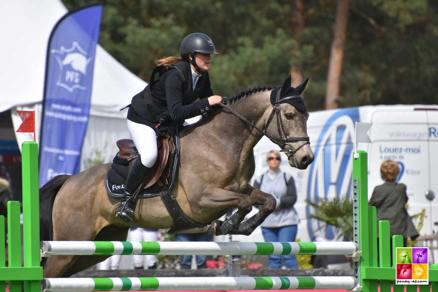BIP 2018 CSIYP Poney As
