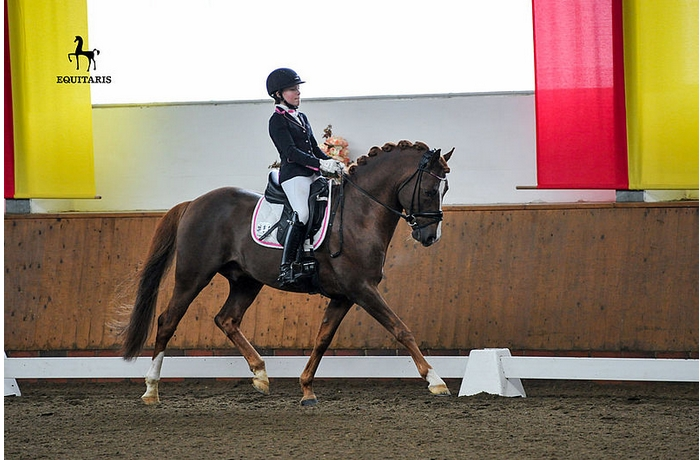 Antonia Busch-Kuffner et Daily Pleasure WE - ph. Equitaris
