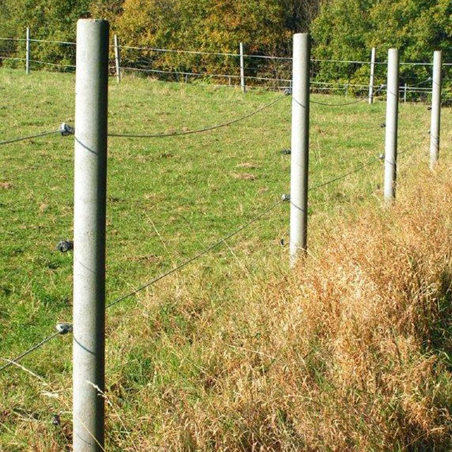 Piquets de clôture