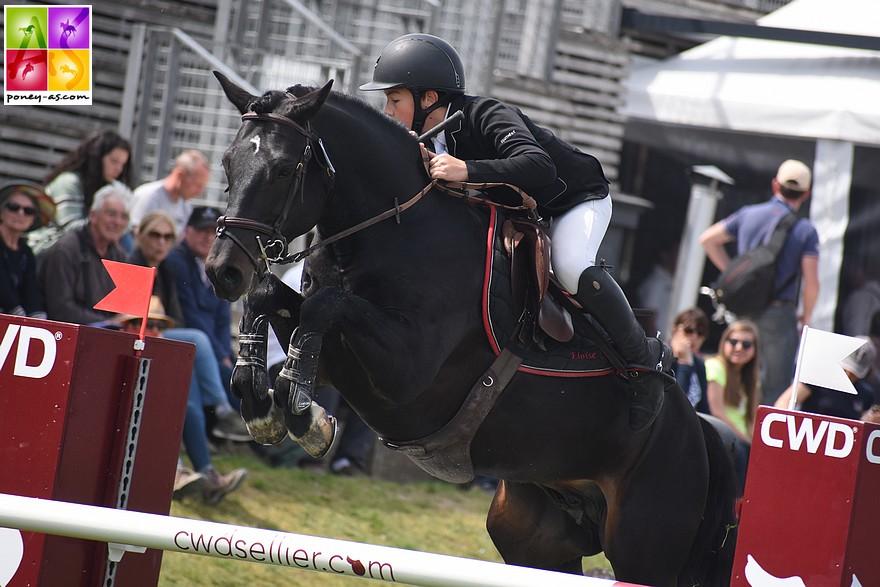 L'étalon Lovelyhill Magical Height, engagé dans le Grand Prix du CSIP du BIP 2019 - ph. Poney As