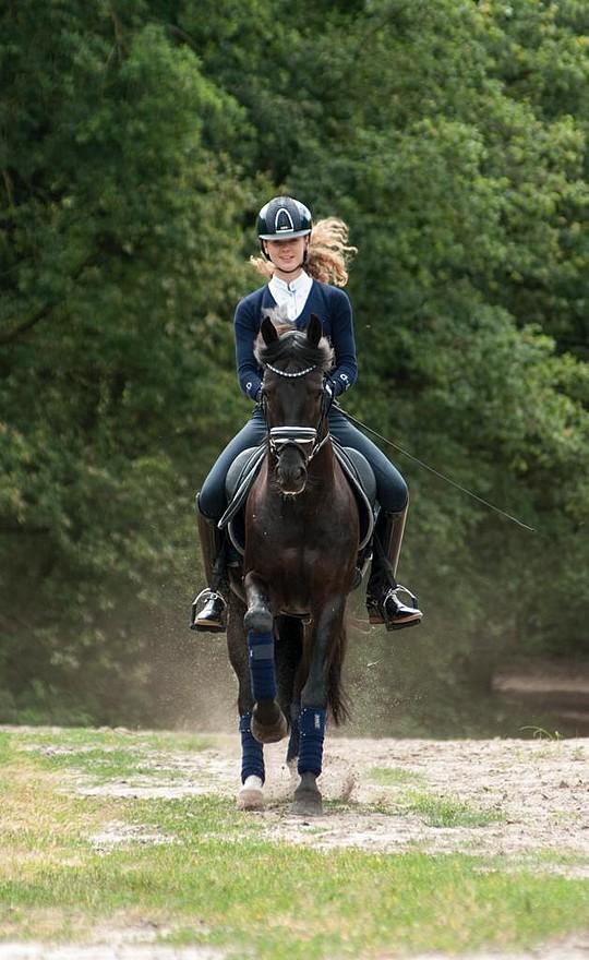 Robin Heiden et Oosterbroek Fenix, victorieux par deux fois au CDIP de Deauville – ph. privée www.horses.nl