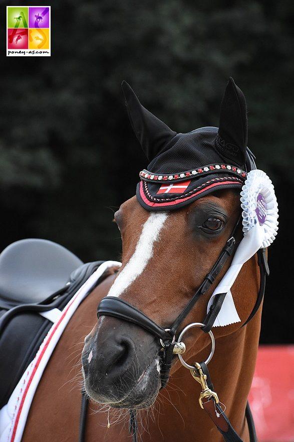 L'équipe Danoise, fabuleuse cette saison, concrétise aux championnats d'Europe - ph. Poney As