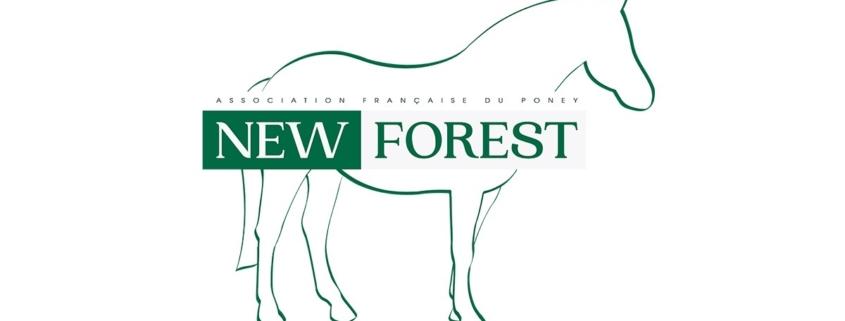 Rendez-vous sur le site web www.asso-newforest.com