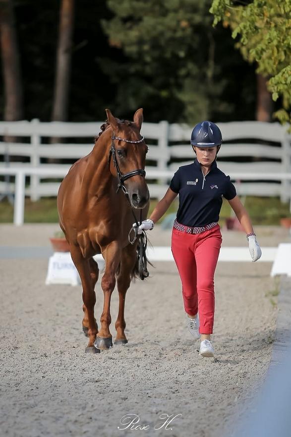 Visite vétérinaire des championnats d'Europe de Pilisjászfalu : Blanche Carré Pistollet présente son complice Dazzling Kid d'Herbord - ph. Rose Harang