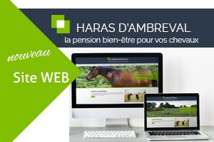 Haras d\'Ambreval