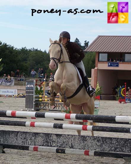 Champion des 4 ans D : Quacao du Verron (Pfs, Rasmus SL, Co x Don Juan V, Co), photo Pauline Bernuchon
