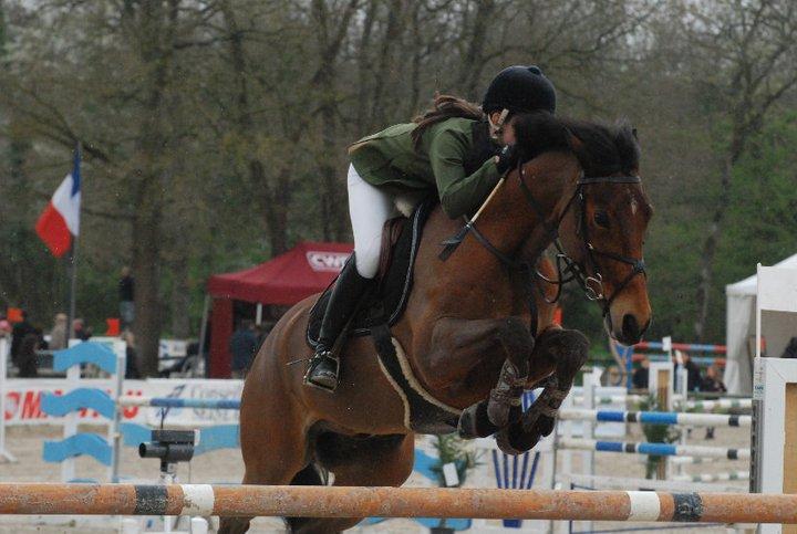 Encore un poney français, mais sous selle irlandaise : Kalim de Montlieu est 7e avec Emma O'Dwyer - Ph. Ludovic Escure