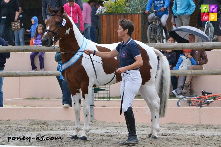 Champion des 3 ans, Alisco du Roquet (par Najisco d'Haryns et Klara Love de Cé par Selim de Siam) - ph. Pauline Bernuchon