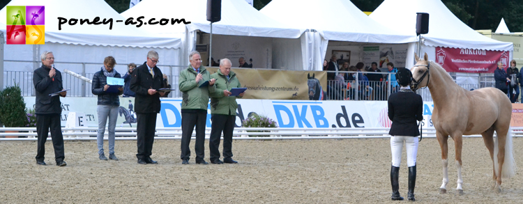 Les juges examinent chaque sujet, en selle et au modèle. Ici Dating AT (Dimension AT x Genesis B) - ph. Pauline Bernuchon