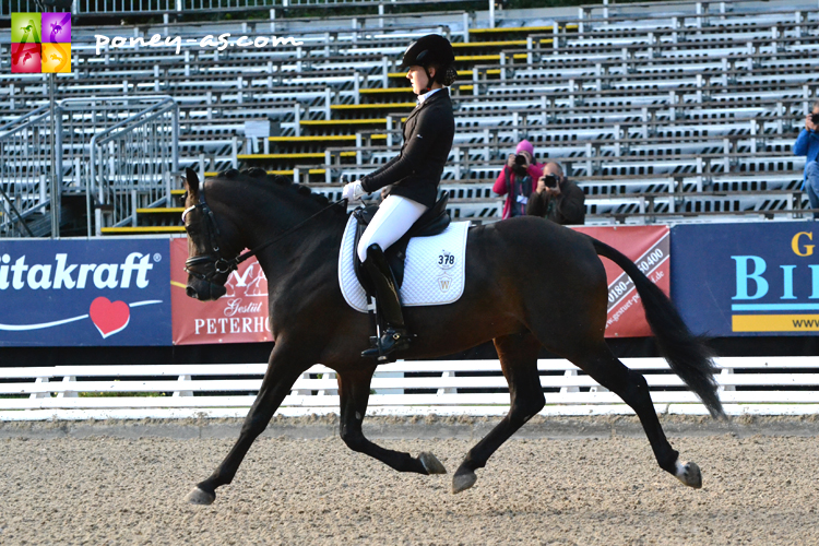 Sacre en 5 ans Dressage de l'étalon D-Day AT (Dance Star AT x Notre Beau) monté par Zoe Gilbers - ph. Pauline Bernuchon