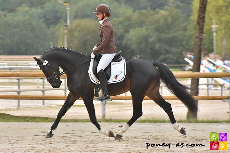 Orchard NL *Poney As - ph. Anaïs Barbier