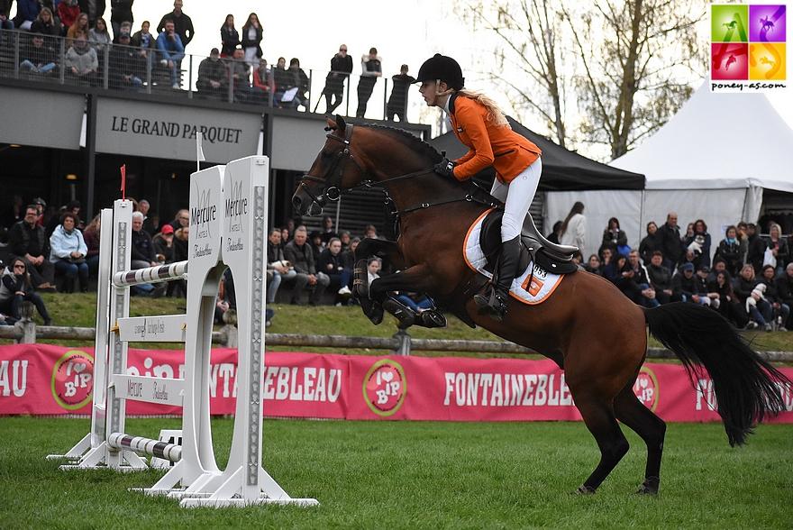 étalon poney as catalogue 2018