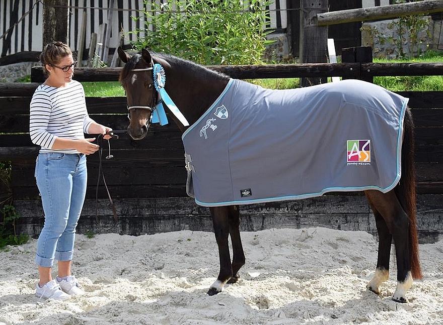 La championne des femelles Pfs de 3 ans, Fortune Teller Alias, portant la chemise Poney As