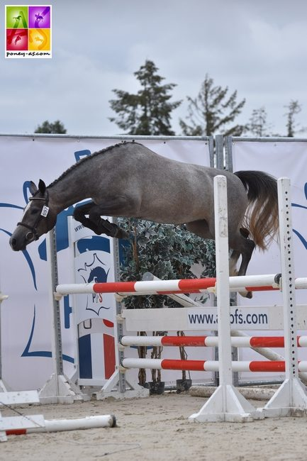 National Pfs 2018 Sologn'Pony