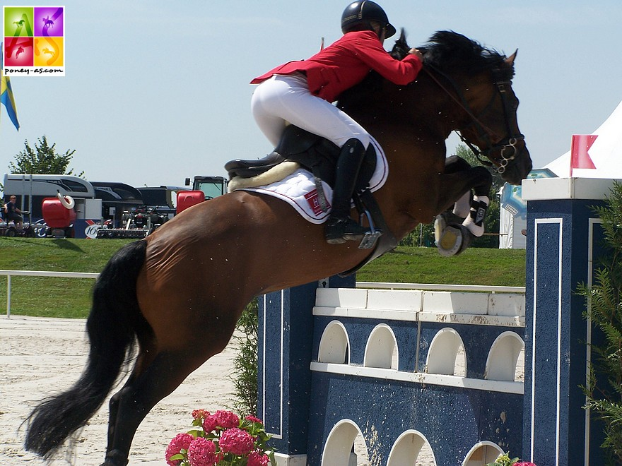 Anydale Ron SL, étalon performer aux championnats d'Europe de CSO - ph. Poney As