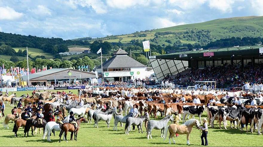 Le Royal Welsh Show fêtait cette année sa 100e édition – ph. coll. Equinepix