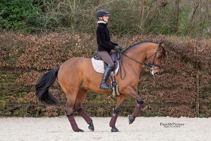 Artiste, Alizée Froment est aussi cavalière internationale de Dressage - ph. Paard&Picture