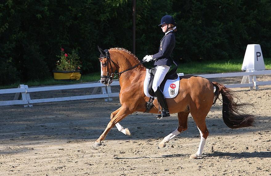 Championnats d'Europe de Freudenberg 2007 - Sanneke Rothenberger et Konrad - ph. pbase.com