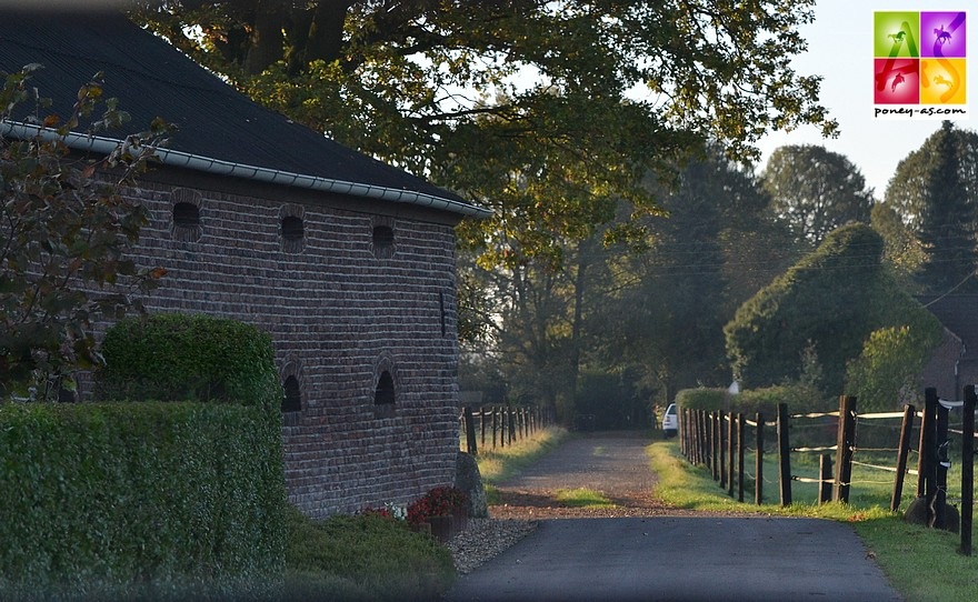 La ferme familiale de Tönisvorst, située près de Düsseldorf - ph. Poney As
