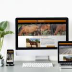 Site Internet du Haras du Poët conçu par l'Agence de communication de Poney As Pourquoi P'AS