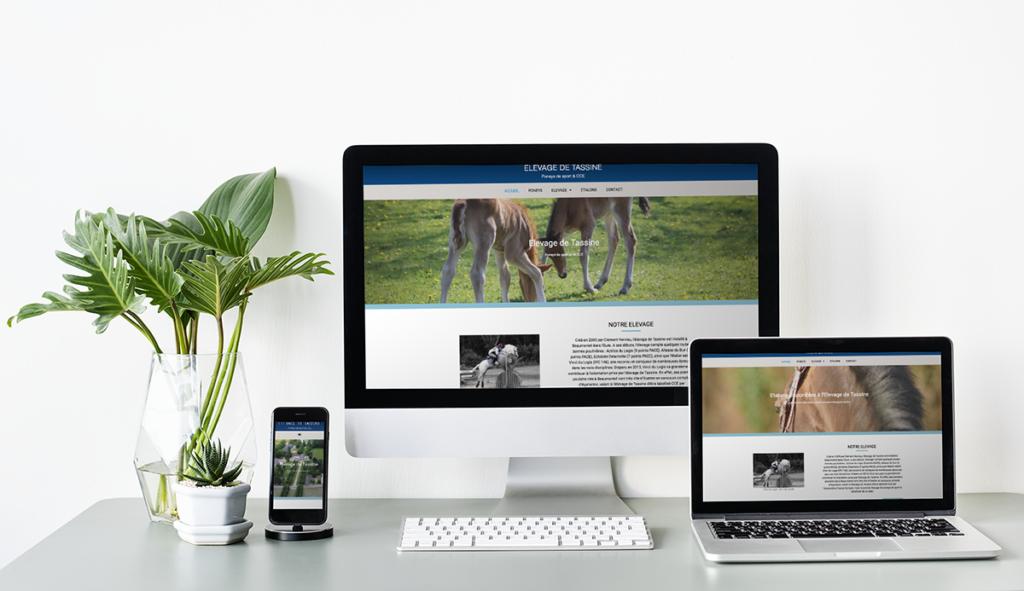 Site Internet de l'Elevage de Tassine conçu par l'Agence de communication de Poney As Pourquoi P'AS