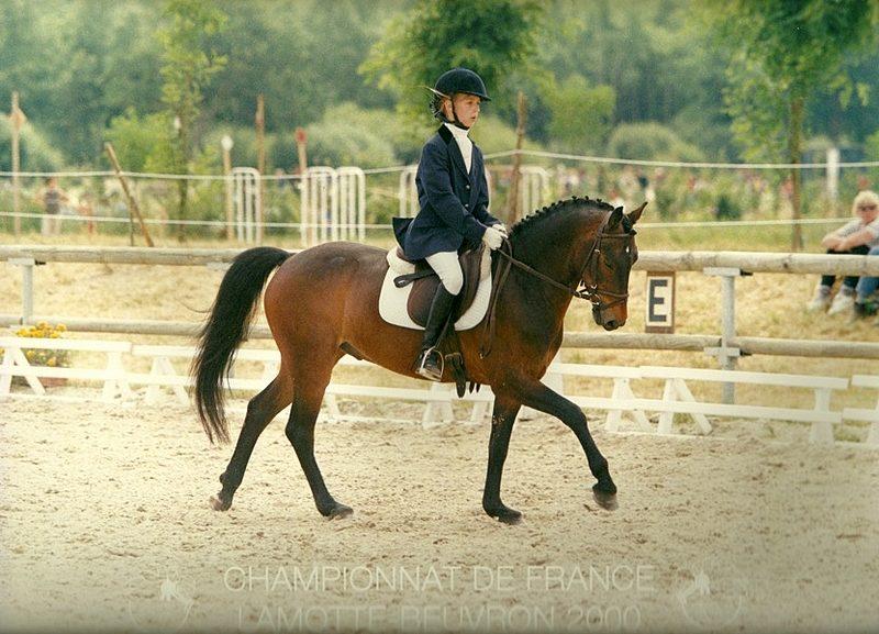 Camille Judet Cheret et son poney Etel du Martray durant les championnats de France de Lamotte-Beuvron. Elle nous confie : « l'achat de mon poney Etel du Martray reste magique car cela a déterminé tout le reste. S'il n'y avait pas eu ce jour, je n'en serais pas là aujourd'hui ! » - ph. PSV