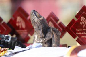 Le trophée remis à la plus belle poulinière du concours - ph. ONP