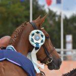 Etoile de Lalande reçoit le titre de championne des poulinières Pfs - ph. Poney As