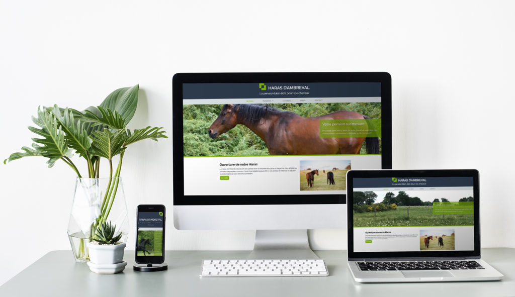 Site Internet Haras d'Ambreval