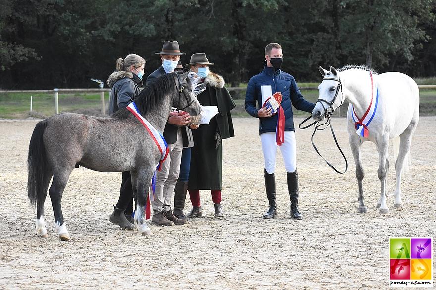 De gauche à droite, Idalgo Dornoa et Habrina de Breilly, respectivement gagnant du championnat des 2 et des 3 ans – ph. Poney As