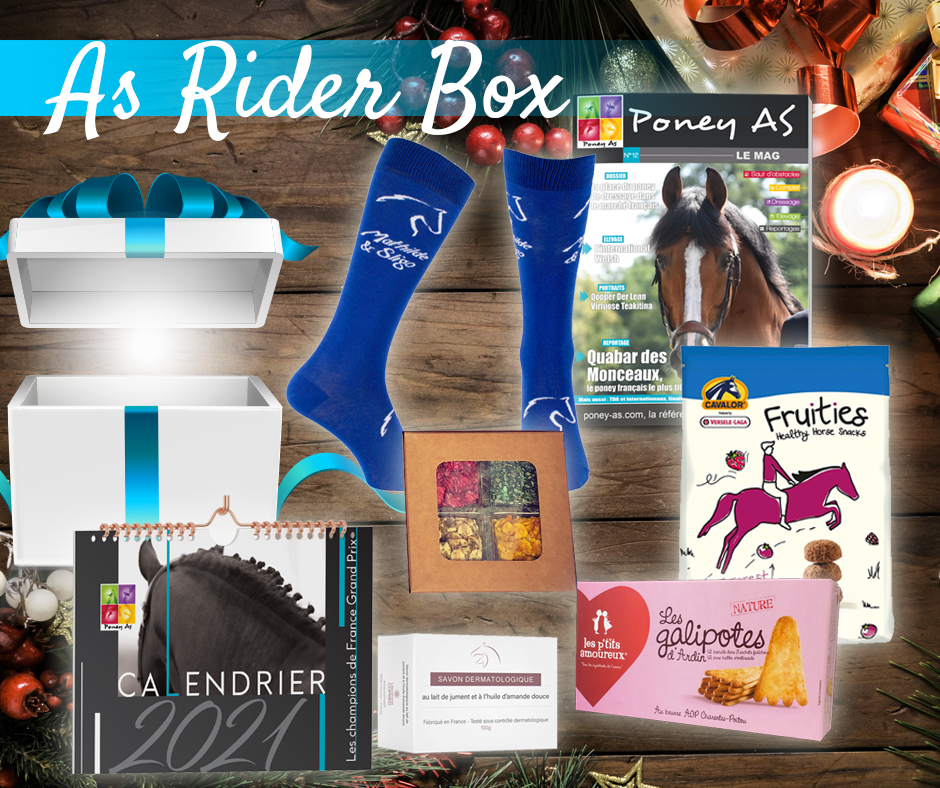 As Rider Box by Poney As